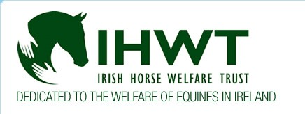 Irish Horse Welfare Trust PR Media Services